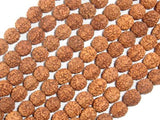 Rudraksha Beads, 7.5mm-8.5mm Round Beads-BeadBeyond