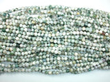 Tree Agate Beads, Round, 6mm-BeadBeyond