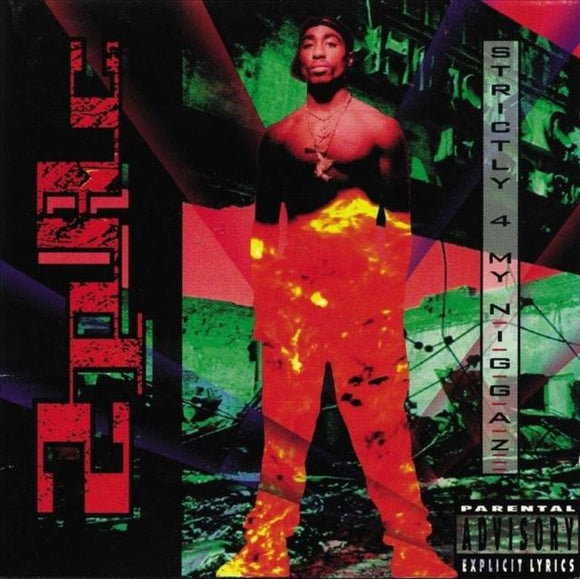 <br>2PAC<br><i> STRICTLY 4 MY N.I.G.G.A.Z. 2LP</I>