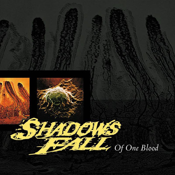 SHADOWS FALL <br><i> OF ONE BLOOD (RSD) LP <br>[LIMIT 1 PER CUSTOMER]</I>