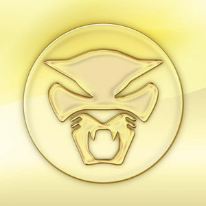 THUNDERCAT<BR><I>THE GOLDEN AGE OF APOCALYPSE LP</I>