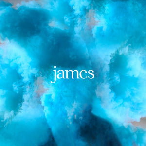 "JAMES<BR><I>BETTER THAN THAT [10"" 45RPM] EP</I>"