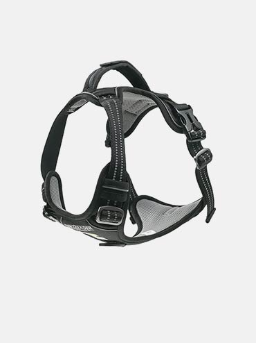· Dog Harness