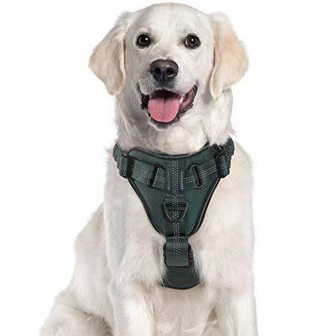 rabbitgoo M / Hunter Green Soft Padded Dog Harness for Medium and Large Dog