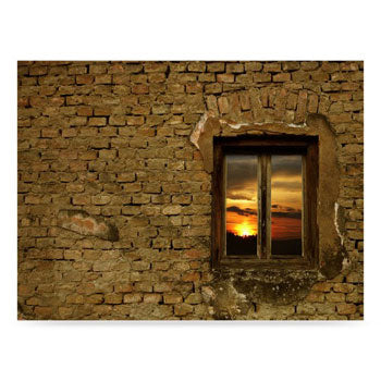 Westcott Sunset Window 6'x8' Scenic Photo Back Drop