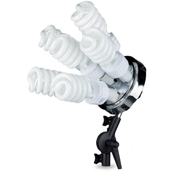Westcott SpiderLite TD6 Constant Light with Small Softbox Kit