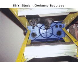 © NYI Student Gerrianne Boudreau