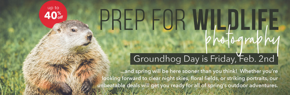 Groundhog Day Photography Tips and Gear