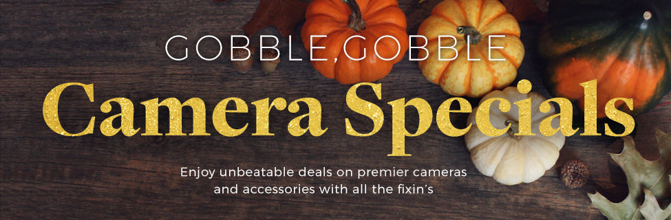 Thanksgiving Photography Deals