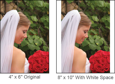 Example of cropping for 8x10