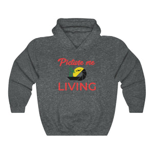 Picture Me Living Logo (Red Letters)