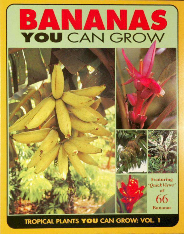 Bananas You Can Grow - Tropiflora