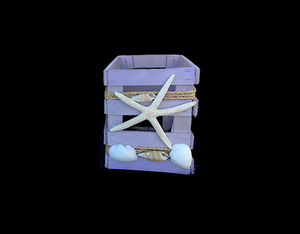 Tillandsia Wooden Seashell Box