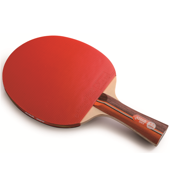 DHS Racket 2002 FL Table Tennis & Ping Pong Racket with Basic Blade, Authentic