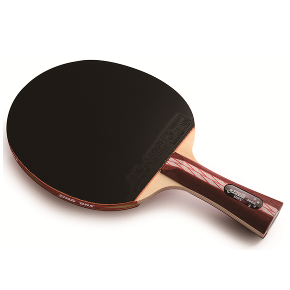 DHS Racket 4002 FL Table Tennis & Ping Pong, Intermediate Racket Type, Authentic