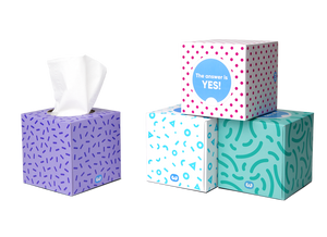 Who Gives A Crap Tissues (1 box)