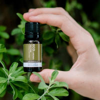 Eco Modern Essentials- Tea Tree 10ml