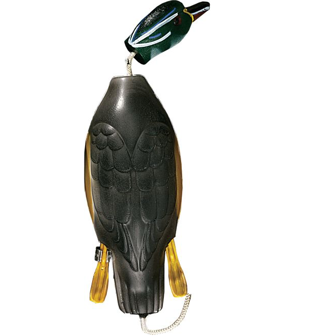 Dokken Deadfowl Wood Duck Trainer