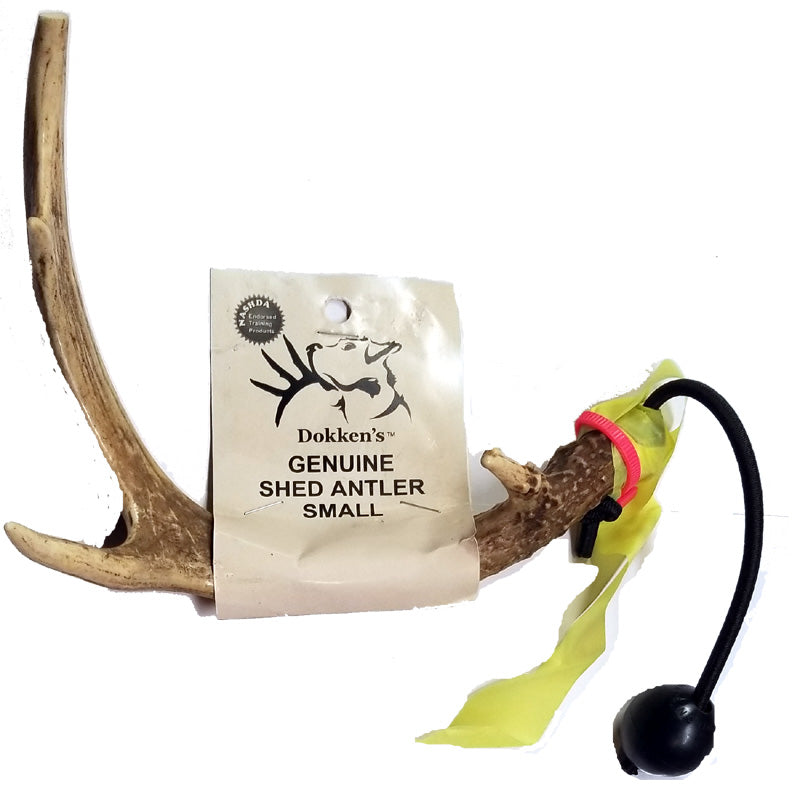 Deer Antler Shed Hunting Dog Training Kit