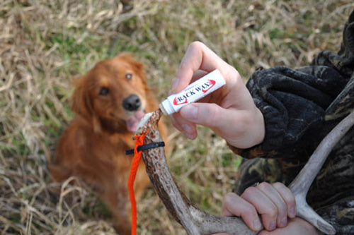 Dokken Deer Antler Rack Wax Dog Training Scent