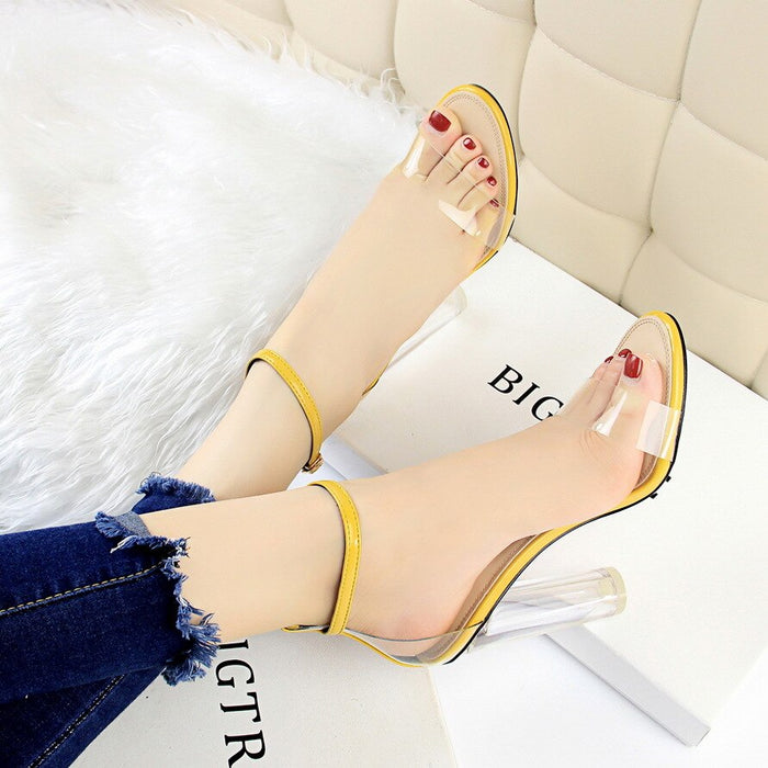 Fashionable Temperament Super High Heel Women Pumps Clear See Through Shoe Upper Sexy Lady Sandals Square Thick Heel Elegant