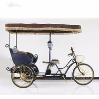 Hot Selling Pedicab Rickshaw Electric Pedal Three Wheels Dutch Cargo Bike No Electric Bakfiet Courier Goods Tricycle