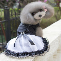 Summer Dress For Dog Pet Dog Clothes Wedding Dress Skirt Puppy Clothing Spring Fashion Jean Pet Clothes