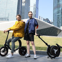 Urban folding electric bicycle mini ebike 14inch Wheel 450W Motor Women E Bike Foldable Electric Bicycle Scooter