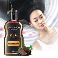200ml Polygonum Multiflorum Hair Loss Treatment Shampoo Hair Care Shampoo Bar Ginger Hair Growth Cinnamon Anti-hair Loss Shampoo