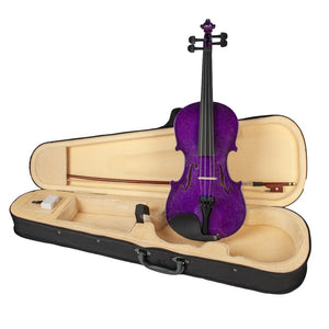 4/4 Size Acoustic Violin Fiddle Kit with Case Bow Rosin for Beginners Students Gift