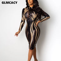 Women Long Sleeve Sequined Bodycon Dress Sexy & Club Shining Sparkly Night Out See Through Spring Fall Party Vestido