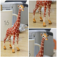 Children's Simulation Land Animal Animal Model Toy Lion Leopard Tiger Giraffe Crocodile Elk Kangaroo Model Toy Educational Toys