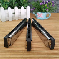 24 Holes Harmonicas Tremolo Key C Silver Color Blues Jazz Rock  Musical Instrument Diatonic Harp Musical Instrument Gift