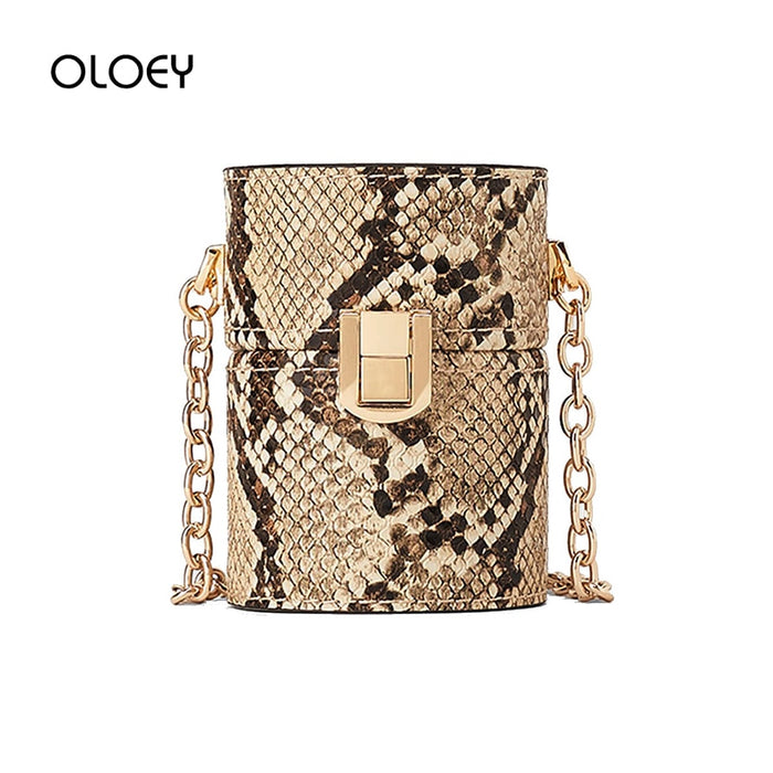 Retro Mini Cylinder Bag 2019 New Small Bag Leather Snake Pattern Chain Crossbody Bags for Female Handbag Women Shoulder Bags Sac