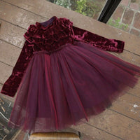 Winter Baby Girls Dress Kids Clothes Velvet Fleece Long Sleeve Princess Party Dress