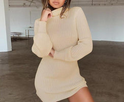 BEFORW Long Sleeve Turtleneck Knitted Dress Women Casual Autumn Winter Sweater Dress Female Sexy Elegant Pullover Mini Dresses