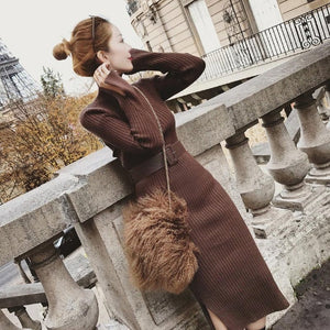 Turtleneck Women Long Sleeve Split Hem Sweater Dress Women Casual Slim Autumn Winter Dress Female Yellow Knitted Dress With Belt