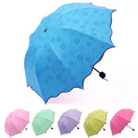 Colors Windproof Umbrella Fashion Sunny Umbrellas Compact Rain Umbrella