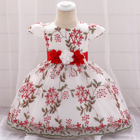 Baby Girl Dresses Flower Embroidery Bow Ball Gown Dress Newborn Baby Baptism Dress Floral Party Birthday Baby Dresses L1888XZ
