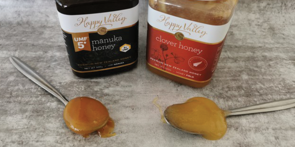 Manuka honey on a spoon to the left & a Clover Honey spoon to the right.
