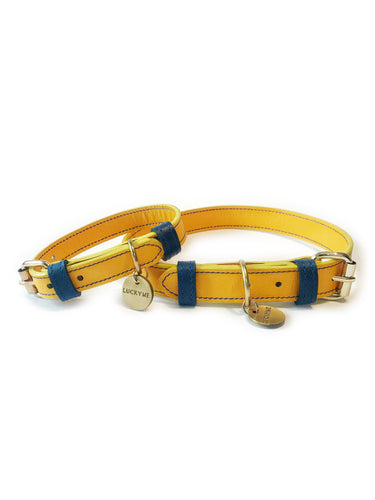 Collar Amarillo-Azul