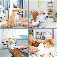 Load image into Gallery viewer, PETRIP Dog Hair Dryer Pet Dryer Professional Grooming Blower Dog Slicker Brush for Medium Pet Small Dog Cat (White, 2 in 1 Dryer)