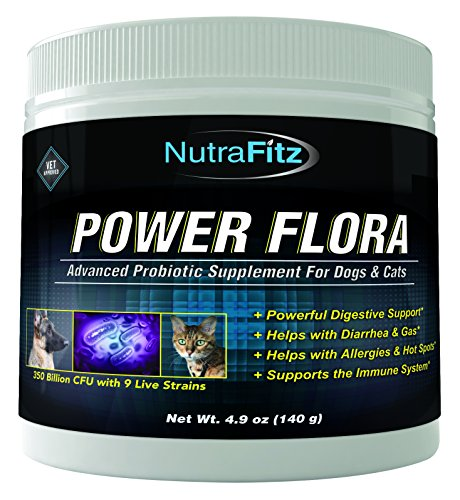 NutraFitz POWER FLORA - Probiotics for Dogs and Cats with 9 Live Strains - Dog Probiotics Improves Dog Breath, UTI, Diarrhea, Constipation, Skin Allergy, Hot Spots - Odorless Powder - 350 Billion CFU/jar