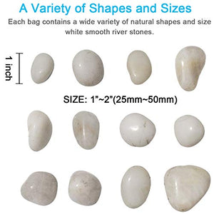 "M--jump 2 Pounds 1"" - 2"" Gravel Size Natural Decorative Stones Polished White Pebbles Use in Glassware, Like Vases, Aquariums and Terrariums to Enhance The Appearance"