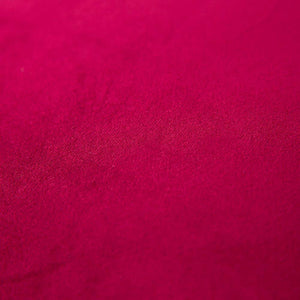 MIULEE Pack of 2, Velvet Soft Soild Decorative Square Throw Pillow Covers Set Cushion Case for Sofa Bedroom Car 20 x 20 Inch 50 x 50 cm Wine Red