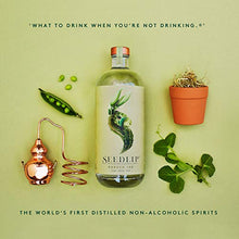Load image into Gallery viewer, SEEDLIP Distilled Non-Alcoholic Spirits (Garden 108) 002 23.7 Fl Oz Clear Glass Bottle