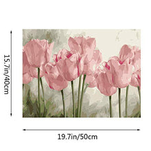 Load image into Gallery viewer, Kimily DIY Paint by Numbers for Adults Kids Tulip Paint by Numbers DIY Painting Acrylic Paint by Numbers Painting Kit Home Wall Living Room Bedroom Decoration Pink Tulips