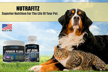 Load image into Gallery viewer, NutraFitz POWER FLORA - Probiotics for Dogs and Cats with 9 Live Strains - Dog Probiotics Improves Dog Breath, UTI, Diarrhea, Constipation, Skin Allergy, Hot Spots - Odorless Powder - 350 Billion CFU/jar