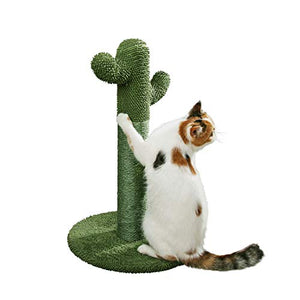PetnPurr Cat Scratching Post with Teaser Ball: The Cactus Cat Scratcher Your Cat Always Wanted Green