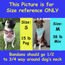 Load image into Gallery viewer, Pittsburgh Steelers Dog Bandana No-Tie Design